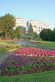 Roman arena in Pula, Croatia. A view across beautiful flower gardens and landscaping to the remains of the ancient Roman Arena or Colosseum in Pula, Croatia stock image
