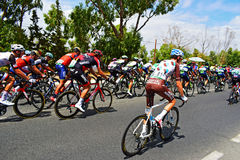 Roman Bardet In The Peleton La Vuelta España. The AG2R  La Mondiale rider closest to the camera in the peleton on stage 9 of La Vuelta Espana 2017 Royalty Free Stock Image