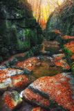 The Roman baths gorge in Bakony mountains, Hungary. In full autumn Stock Photos