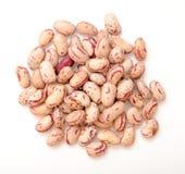 Roman bean. A pile of roman bean on white background Royalty Free Stock Photo