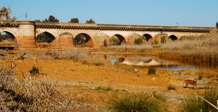 Roman bridge Royalty Free Stock Photos