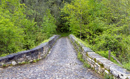 Roman bridge input, Poo de Cabrales. Roman bridge input, Poo de Cabrales, Old rustic village of Asturias, Spain Stock Image