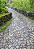 Roman bridge input, Poo de Cabrales. Stock Images