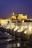 Roman Bridge and Mosque of Cordoba Royalty Free Stock Photography