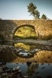 roman bro arkivfoto