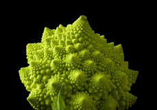 Roman broccoli Royalty Free Stock Photography