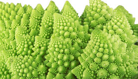 Roman broccoli Royalty Free Stock Images