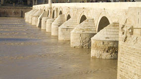 Roman brug in Cordoba stock afbeeldingen