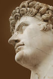 Roman bust Stock Photography