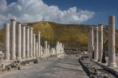Roman Cardo in Beit She'an National Park, Israel. Ruins of the ancient Roman city Scythopolis stock photos