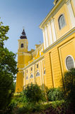 Roman Catholic Basilica in Oradea Lizenzfreie Stockfotografie
