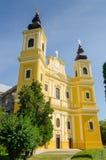 Roman Catholic Basilica in Oradea Lizenzfreies Stockbild