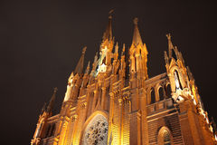 Roman Catholic Cathedral royalty free stock photo