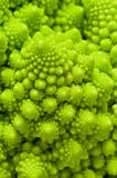 Roman cauliflower. Roman cauliflower, broccoli, also called selvedge, surprising for the perfection of the design of its lines which are repeated as fractals Royalty Free Stock Photos