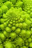 Roman cauliflower. Royalty Free Stock Photos