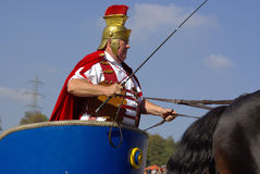 Roman chariot racing, Marbach Stallion Parade Royalty Free Stock Photo