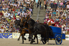 Roman chariot racing, Marbach Stallion Parade Royalty Free Stock Photography