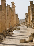 Roman city in Jerash Stock Image