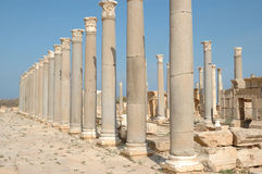 Roman city of Leptis Magna, Libya Royalty Free Stock Image