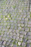Roman cobblestones and green moss. Green moss frames Roman cobblestones stock images