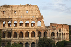 Roman Colosseum Stock Afbeeldingen