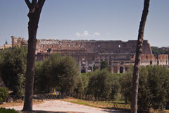 Roman colosseum Royalty Free Stock Images