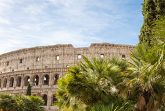 Roman Colosseum Background with Trees, Sky, and Copy Space Stock Photos