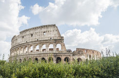 Roman Colosseum in Italy. Royalty Free Stock Photos