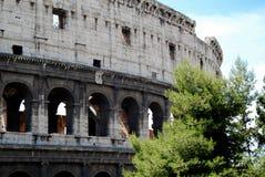 Roman Colosseum Exterior Stock Image