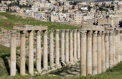Roman Columns binnen in de Jordanian stad van Jerash (Gerasa van Antiquiteit), Jordanië Stock Afbeeldingen