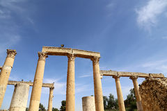 Roman Columns in the Jordanian city of Jerash (Gerasa of Antiquity) Royalty Free Stock Photo
