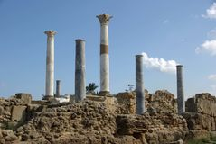Roman columns, Libya Stock Photos
