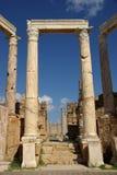 Roman columns, Libya Stock Image