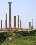Roman Columns, Tyre Royalty Free Stock Photography