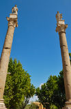 Roman colums at Alameda de Hercules Royalty Free Stock Images