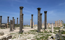 Roman Corinthian columns in Umm Qais (Umm Qays) --is a town in northern Jordan near the site of the ancient town of Gadara. Royalty Free Stock Photo