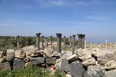 Roman Corinthian columns in Umm Qais (Umm Qays) --is a town in northern Jordan near the site of the ancient town of Gadara. Stock Photography