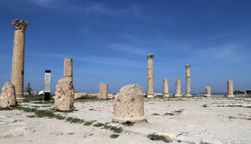 Roman Corinthian columns in Umm Qais (Umm Qays) --is a town in northern Jordan near the site of the ancient town of Gadara. Stock Image