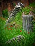 Roman Decay - Roman Forum - Roma, Italia Fotografie Stock