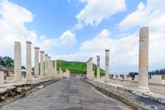Roman era main street in Bet Shean. View of the Roman era main street in the ancient city of Bet Shean, now a national park. Northern Israel royalty free stock images