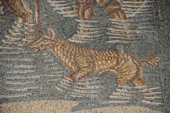 Roman floor mosaic. Tile detail dog in water stock photo