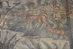 Roman floor mosaic. Tile detail dogs in water royalty free stock images