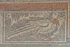 Roman floor mosaic. Tile detail dove bird royalty free stock images