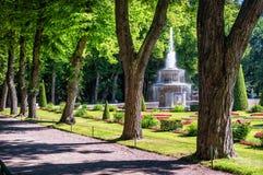 Roman fontein in Peterhof Royalty-vrije Stock Foto