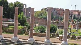roman fora Video av Roman Forum i Rome, Italien Latin: Forum Romanum, italienare: Foro Romano lager videofilmer