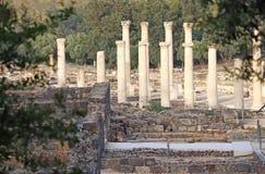 roman forntida kolonner royaltyfri bild