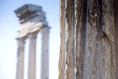 The Roman Foro Stock Photography