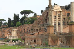 The Roman Forum Royalty Free Stock Image