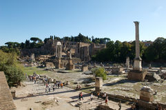 roman forum Obrazy Royalty Free