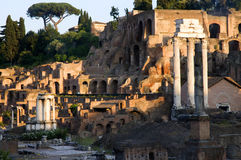roman forum Obrazy Stock